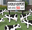 Holy Cow Birthday Woodcraft Pattern