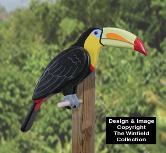 3D Life-Size Toucan Wood Pattern