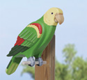 3D Life-Size Green Parrot Wood Pattern