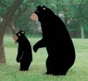 Standing Bears Woodcraft Pattern