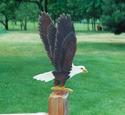 Yard Eagle Woodcrafting Pattern