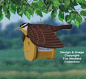 Meadowlark Birdhouse Wood Project Pattern