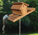 Squirrel-Proof Birdfeeder Wood Plan