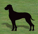 Great Dane Shadow Woodcrafting Pattern