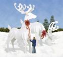 GINORMAS White Reindeer Pattern Set