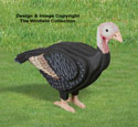 3D Life Size Female Turkey Woodcrafting Pattern