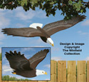 3D Life-Size Flying Eagle Pattern