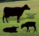 Family Herd Shadow Pattern