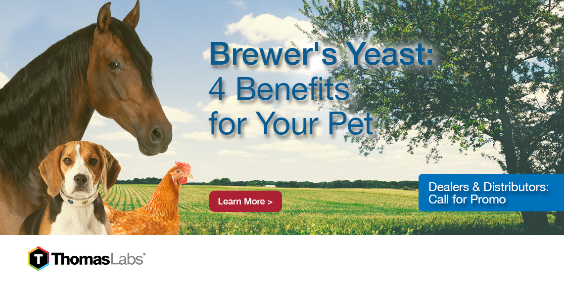 brewers yeast for pets