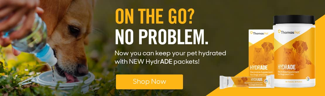 HydrADE Electrolyte Supplement for Dogs and Cats