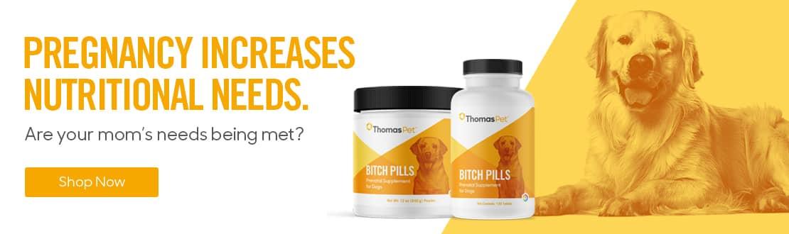 Bitch Pills