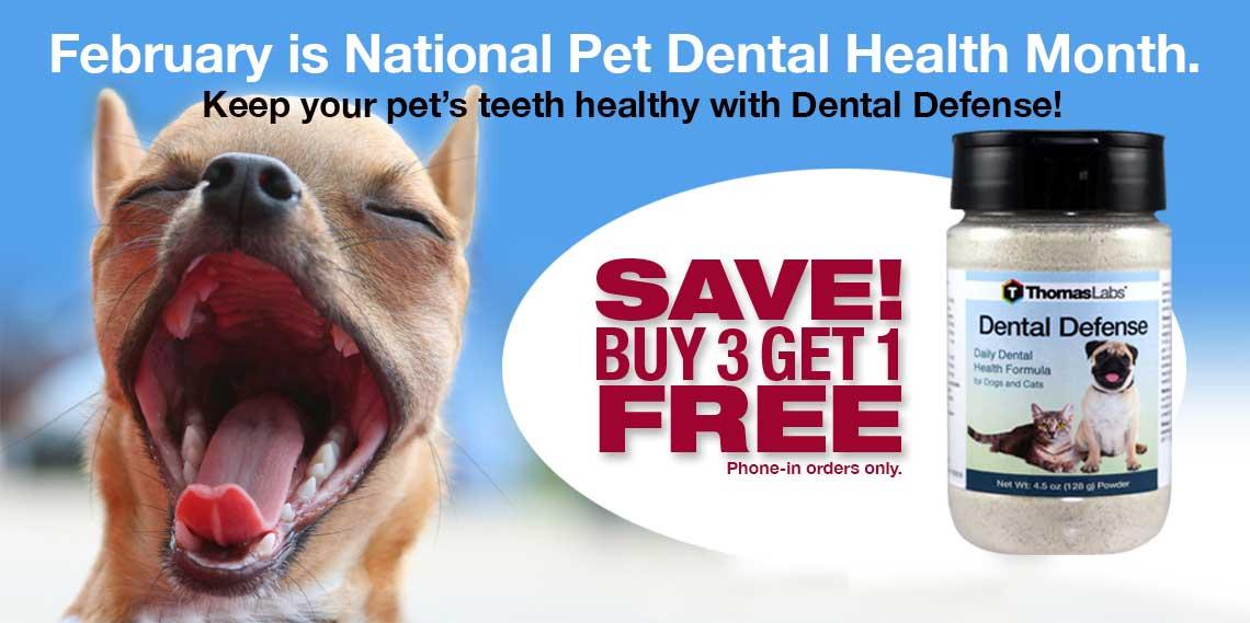 Dental Defense Dog Dental Health from Thomas Labs