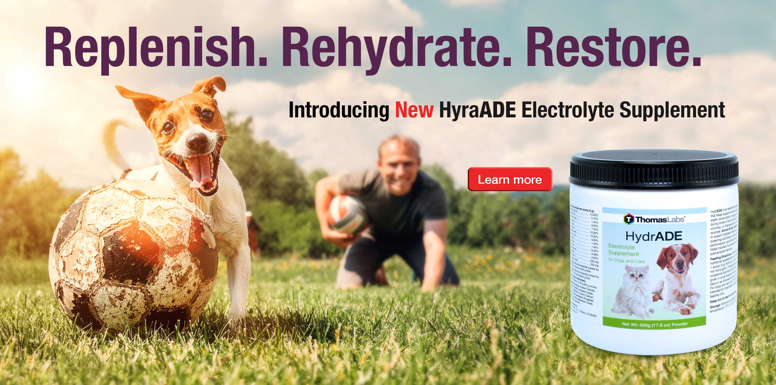 Help for Dog and Cat Dehydration