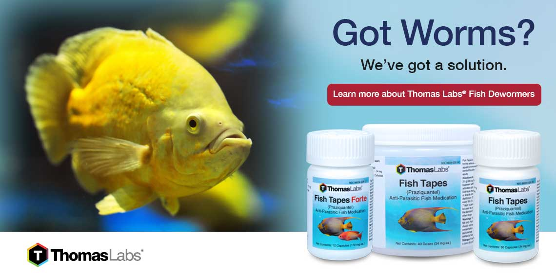 Best Selling Fish Dewormers