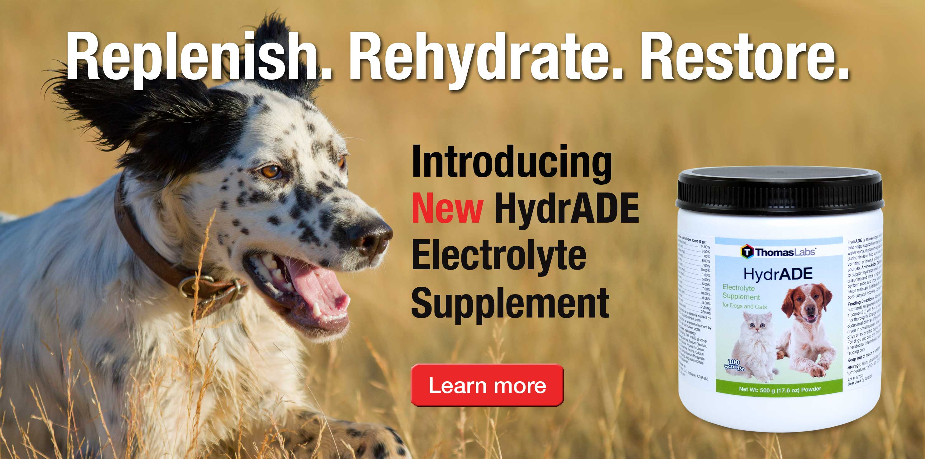 Learn More About Pet Electrolytes