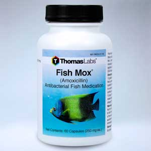 Fish Mox 60 count Amoxicillin from Thomas Labs