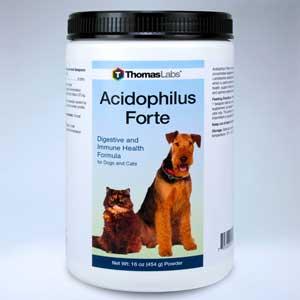 Acidophilus Forte