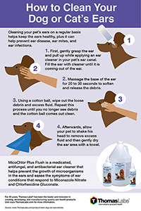 how to clean dog and cat's ears infographic