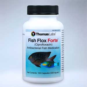 Fish Flox Forte 100 count Ciprofloxacin Thomas Labs