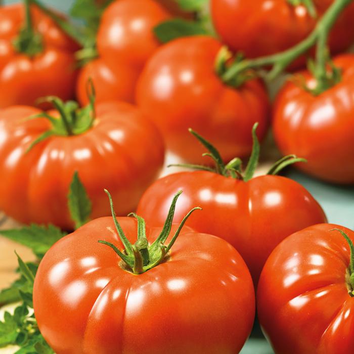 Belle Of The Ball Hybrid Tomato