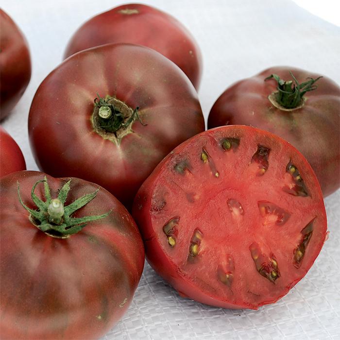 Carbon Tomato