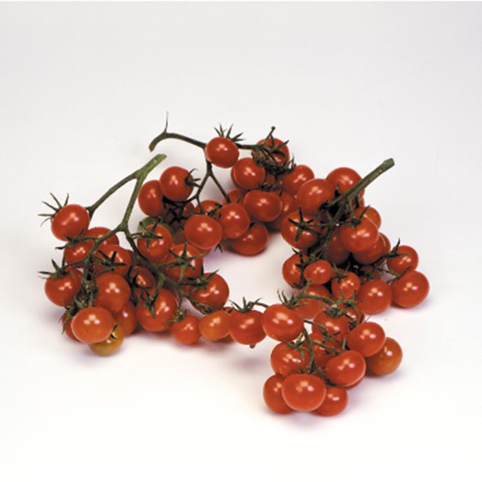 Christmas Grapes Tomato