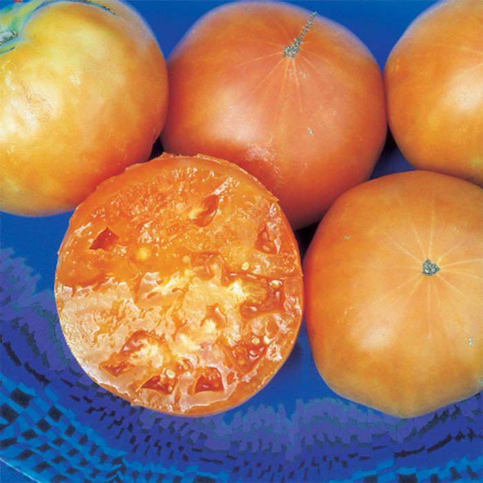Kelloggs Breakfast Tomato