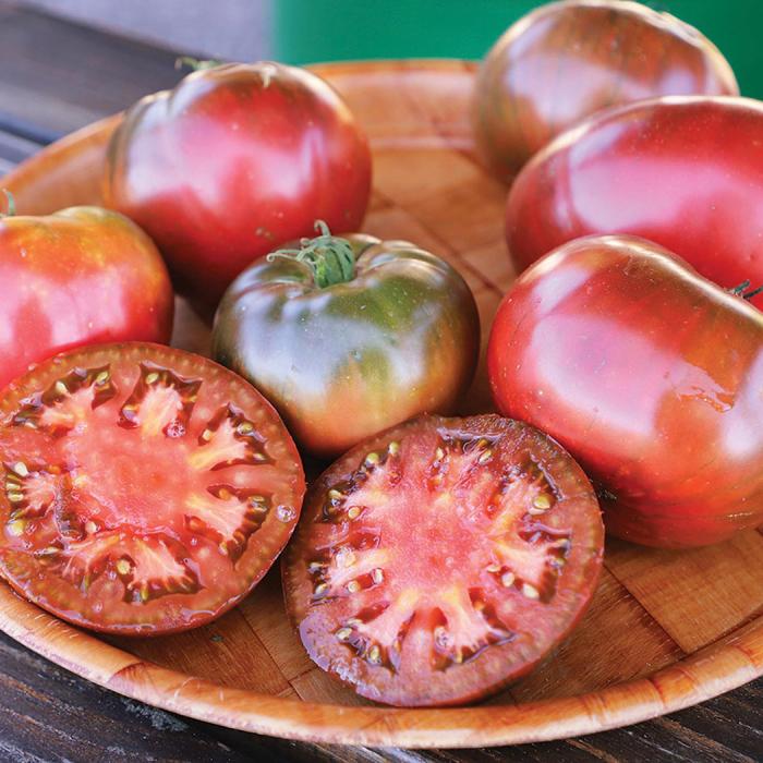 Medusa Hybrid Tomato