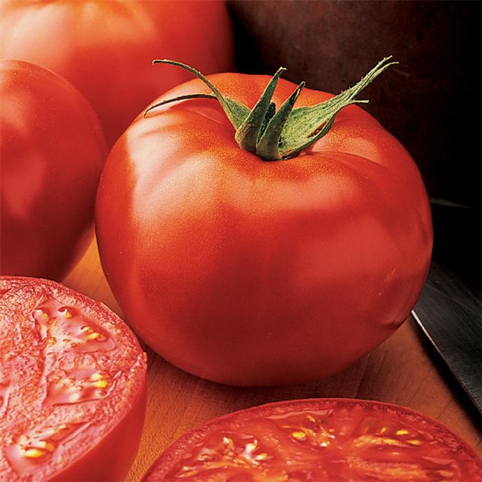 New Yorker Tomato