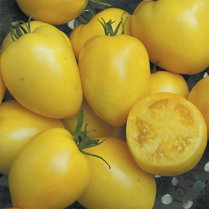 Powers Heirloom Tomato
