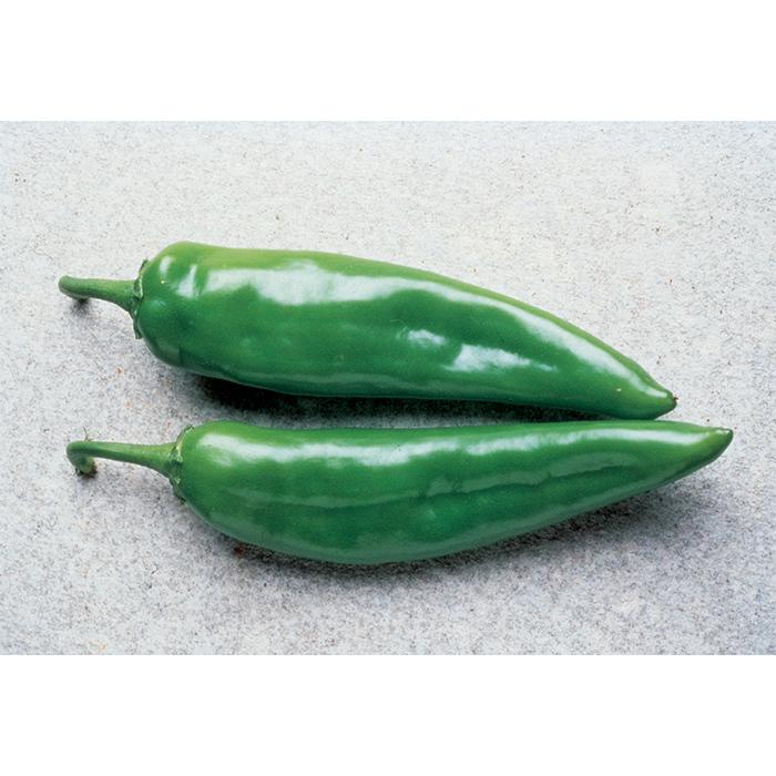 Anaheim Chili Pepper