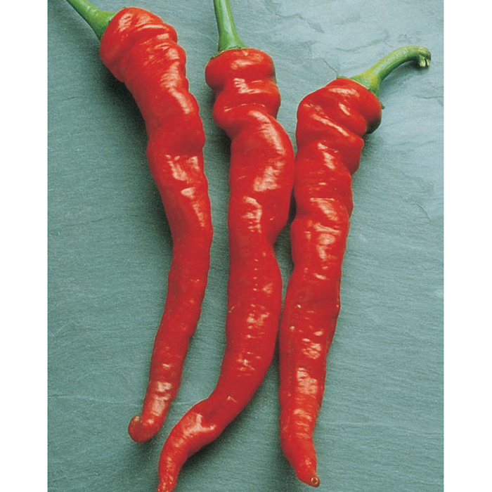 Cayenne Large Red Thick Pepper
