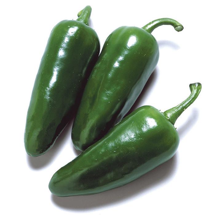 Felicity Hybrid Jalapeno Pepper