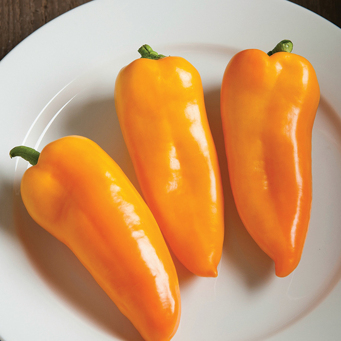 Cornito Giallo Hybrid Pepper