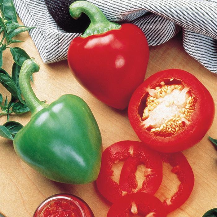 Pimiento Elite Hybrid Pepper