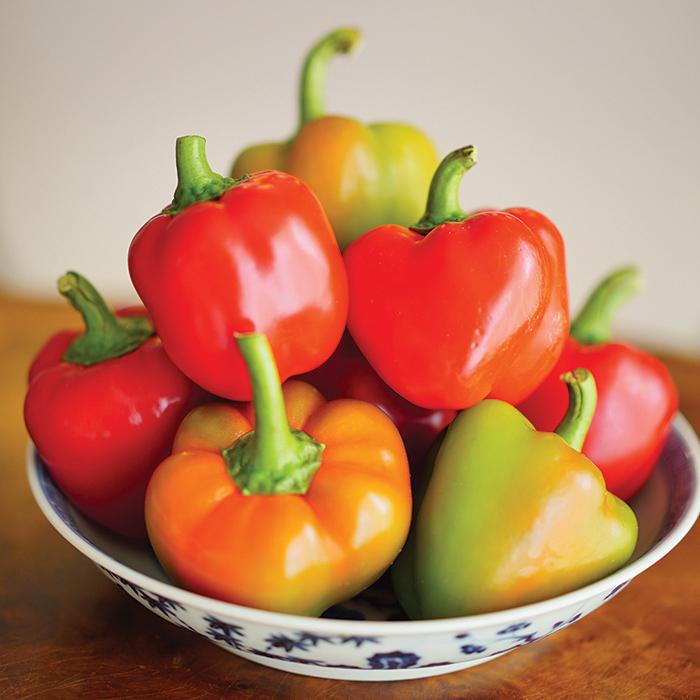 Sweetie Pie Hybrid Pepper