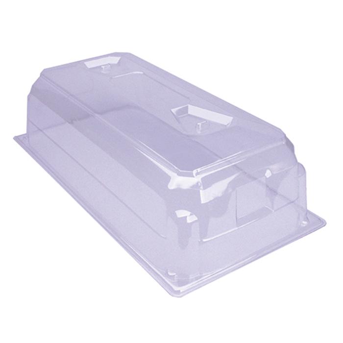 Q Plug Starter Kit - Extra Domes