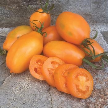 Artisan Orange Caprese Tomato
