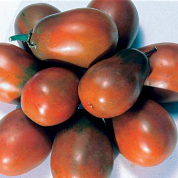 Black Plum Tomato