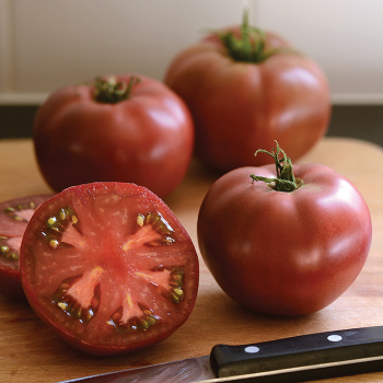 Heirloom Marriage Cherokee Carbon Hybrid Tomato