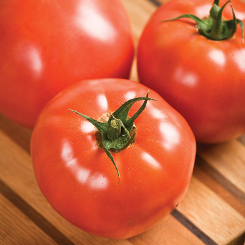 Celebrity Hybrid Tomato - 30 seeds