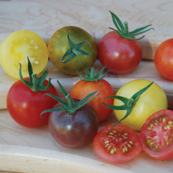 Heirloom Cherry Blend Tomato - 20 seeds