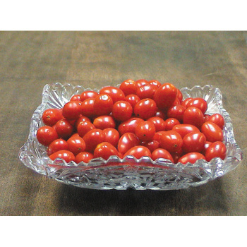 Jelly Bean Red Hybrid Tomato