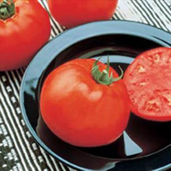 Jetsetter Hybrid Tomato - 30 seeds