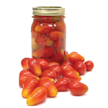 New Hampshire Pickling Tomato