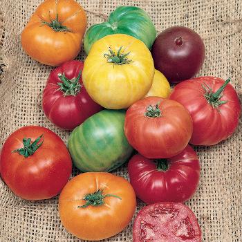 Rainbow Beefsteak Tomato Mix