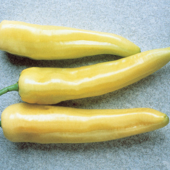 Hungarian Yellow Wax Pepper