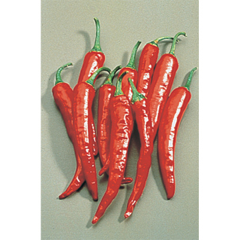 Thai Hot Pepper