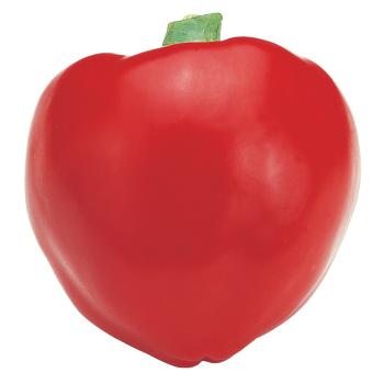 Pimiento L Pepper