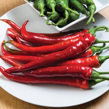 Longhorn Hybrid Pepper